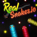 Игра Настоящие змеи
